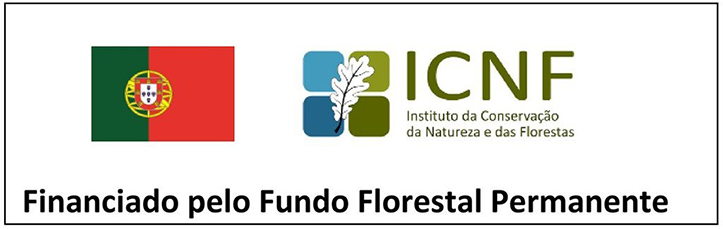 icnf1 1 1024 2500 1 1024 2500